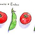 プチトマトとスナップエンドウ