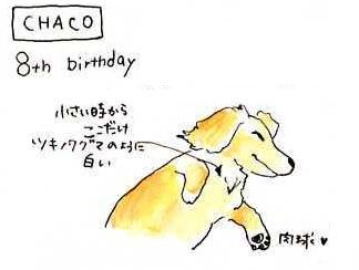 chaco's birthday
